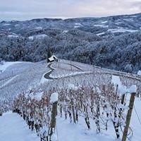 Vinogradniško-turistična kmetija Dreisiebner