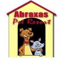 Abraxas Pet Resort