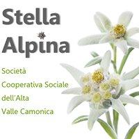 Stella Alpina Cooperativa Sociale