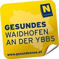Gesunde Gemeinde Waidhofen/Ybbs