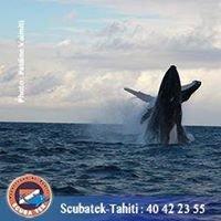 Scubatek-Tahiti