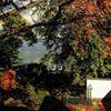 Casa sull'Albero Lake Como