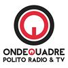 PoliTo OndeQuadre