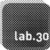lab30
