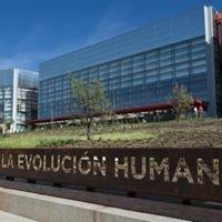 Congreso Internacional Arqueología Experimental Burgos 2014