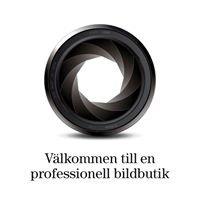 Fotoexperten i Lidköping