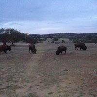 Texana Ranch