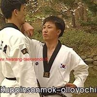 Hwarang Taekwondo Var à la seyne sur mer