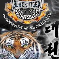 Black Tiger Taekwondo Academia de Artes Marciales