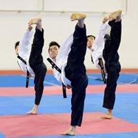 Taekwondo Viet Nam