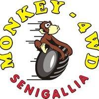 Club Monkey 4WD - Senigallia