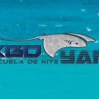 Kiteboard Yucatan