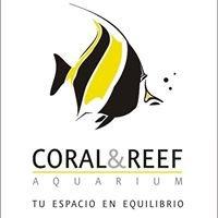 Coral & Reef