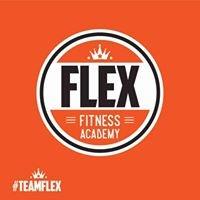 Flex Fitness Academy
