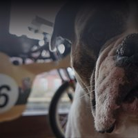 SpeedUp Motorcycle