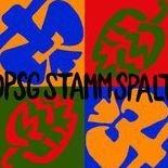DPSG Stamm Spalt