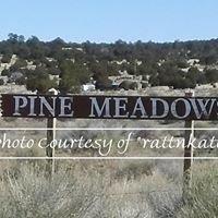 Pine Meadow Ranches, Cibola County New Mexico