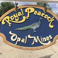 Royal Peacock Opal Mine