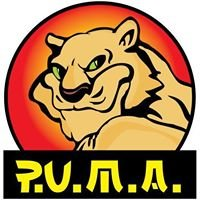 PUMA CLUB Sibiu