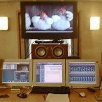 Manor Station Studio - Tonstudio