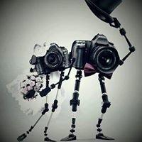 Avenida fotógrafos