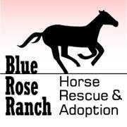 Blue Rose Ranch Horse Rescue & Adoption