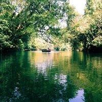 Adavi Eco Tourism,konni,pathanamthitta