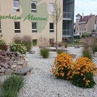 Der Voigt Gärtner - Gartengestaltung mit Pfiff