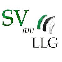 Schülervertretung am LLG - SV
