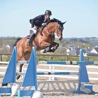 Sceilig Sport Horses
