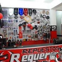 REPUESTOS REGUERO RACING