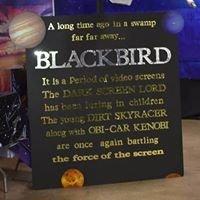 Blackbird Quarter Midget Race Club
