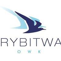 Rybitwa