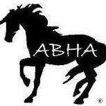 American Blazer Horse Association