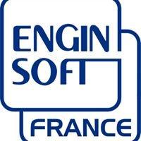 Enginsoft France