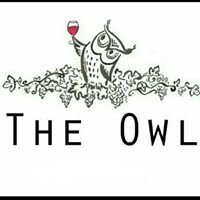 The Owl at Tamworth
