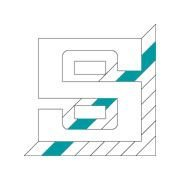 P+S Polyurethan Elastomere GmbH & Co. KG
