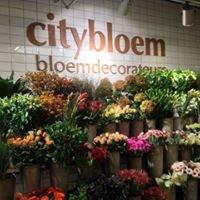 Citybloem Waasland