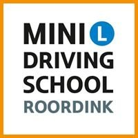 MINI Driving School Roordink