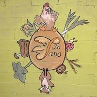 PitaSana - Huevos ecológicos