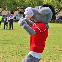 Drostdy O/18 Rugby 2012