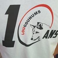 Les Lougdunums