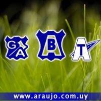 Grupo Araujo