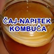 KOMBUČA-čajna goba