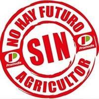 Agricola del Jalon s.a.