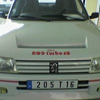 Peugeot 205 all models