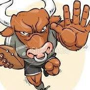 Naitasiri North Bulls Rugby Union