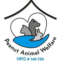 Peanut Animal Welfare Melkbosstrand
