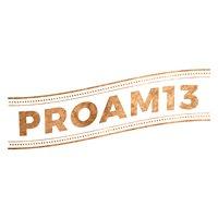 Pro-Am 13
