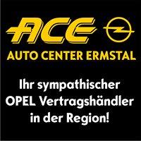 ACE Dettingen